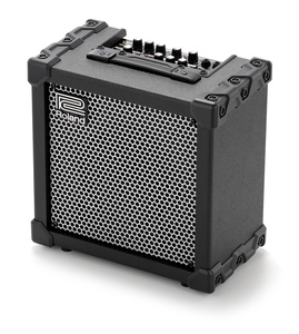 Roland Cube-20XL