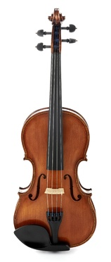 Roth & Junius RJVE 4/4 Professional Violin